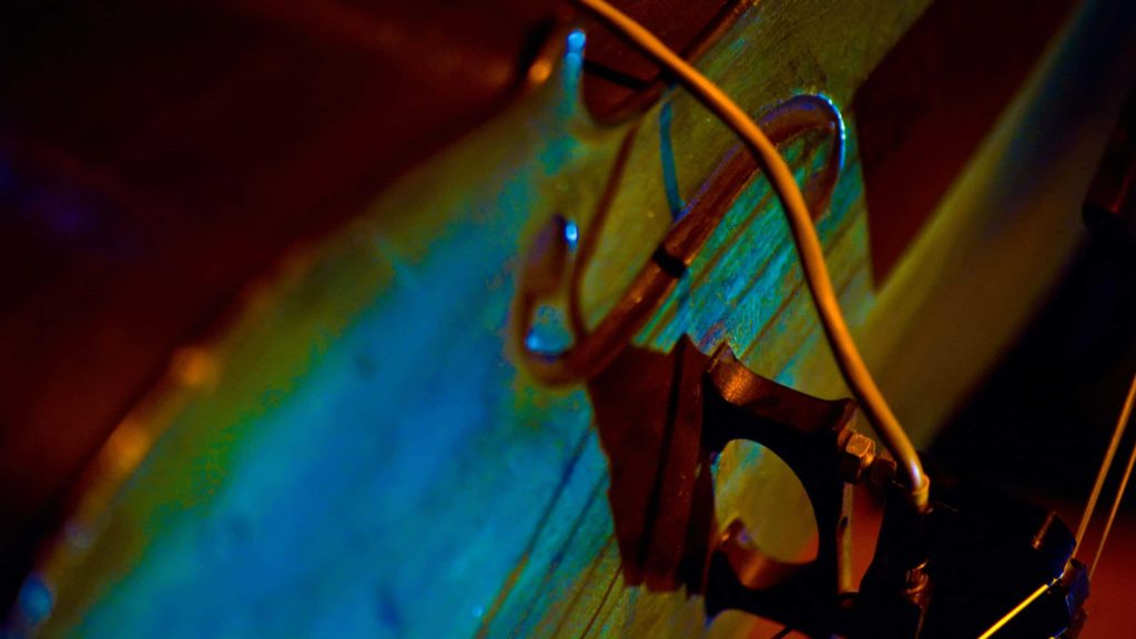 Close-up of the bridge of a cello. Courtesy photo by Cody Molica.