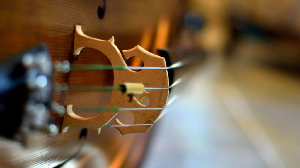 Cello strings gleam. Creative commons courtesy photo.
